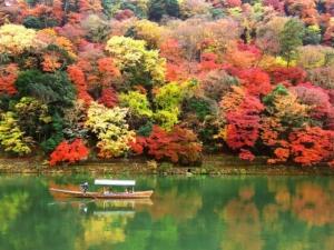 kyoto arashiyama autumn