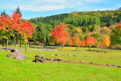 hokkaido furano asahigaoka sogo city park