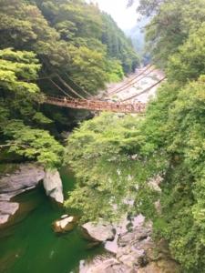 tokushima oboke bridge