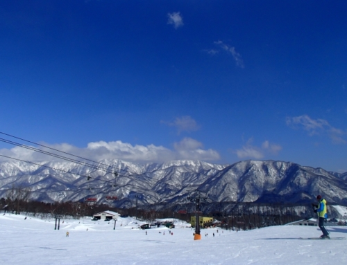 SKIING TOUR with Historical Townscape Sightseeing IN HAKUBA
