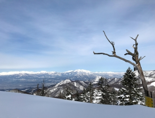 SKIING TOUR with Historical Townscape Sightseeing IN SHIGA-KOGEN