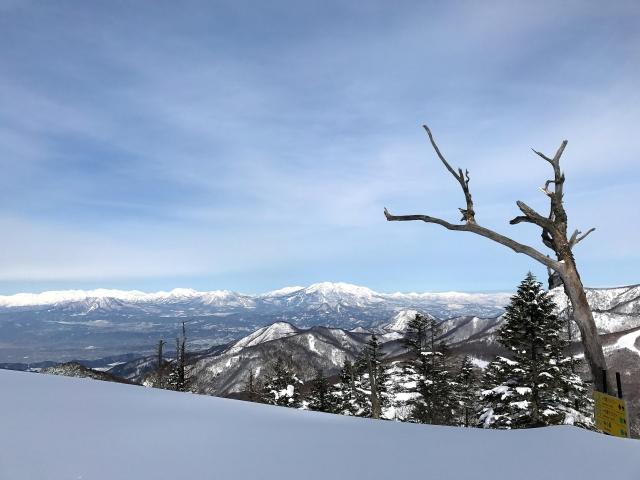 nagano shigakogen ski resort