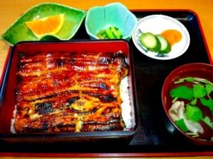 glaze-grilled eel kabayaki