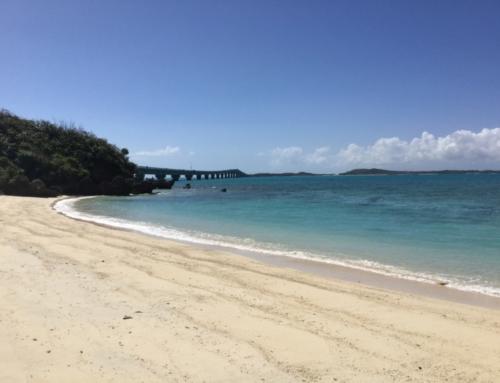 Пребывание на острове Миякодзима(Окинава)