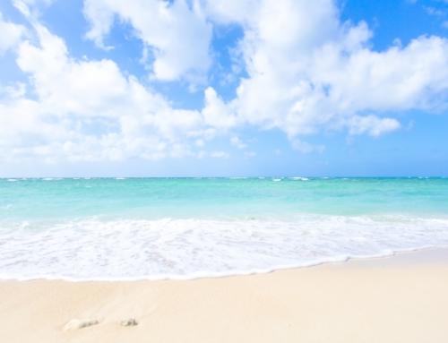 Мы предлагаем Вам отдых на Окинаве